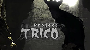 Project_Trico